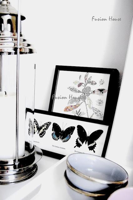 obrazki z motylami